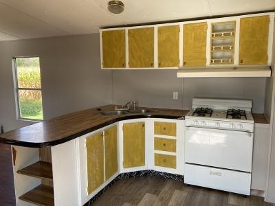 Mobile Home at 124 Chestnut Mount Morris, NY 14510
