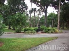 Woodland Fountain