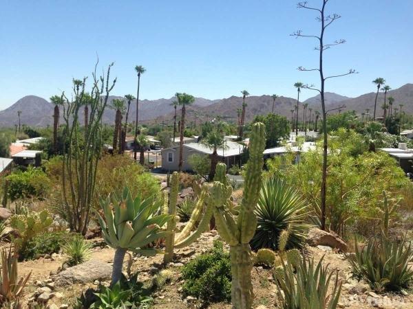 Private Desert Garden