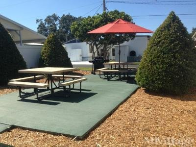Resident BBQ and Picnic Area