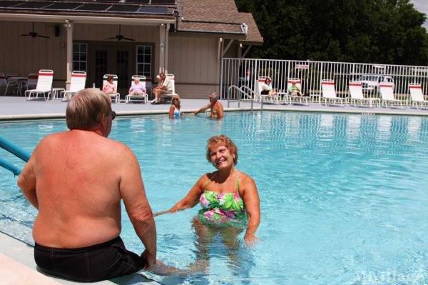 Outdoor Pool w/ Pavillion