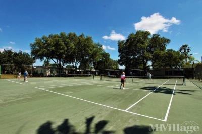 Tennis, Pickleball