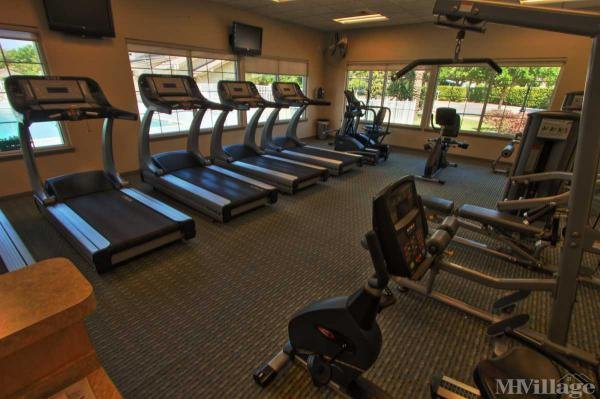 Large Fitness, Aerobic Centers