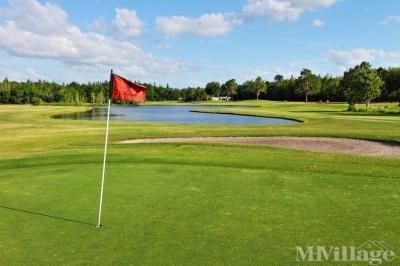 Gorgeous Golf Views