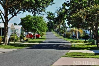 Beautiful Neighborhoods