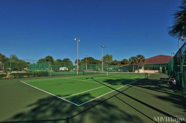 Lit Tennis Courts