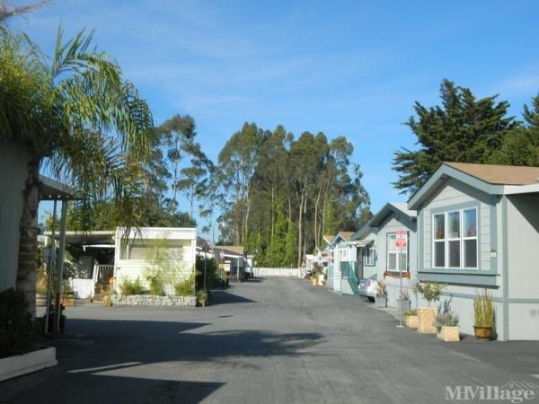 Photo of Ocean Breeze Manor, Santa Cruz, CA