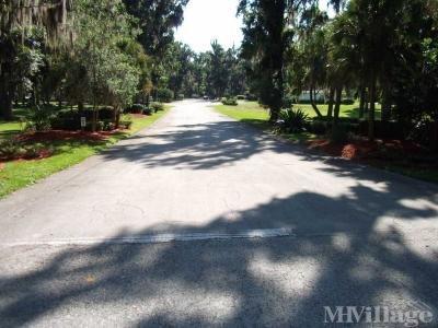 Mobile Home Park in Reddick FL