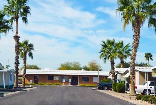 Photo of Evergreen , Chandler, AZ