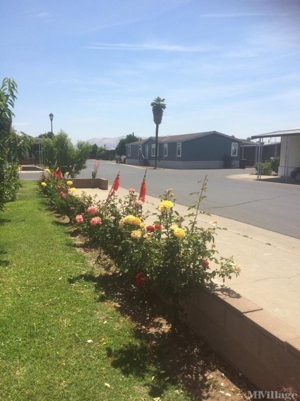 Photo of Orosi Mobile Estates MHC, Orosi, CA