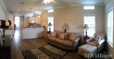 Palm Harbor Model Living Room