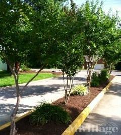 Photo 5 of 25 of park located at 206 Sue Ellen Drive La Vergne, TN 37086