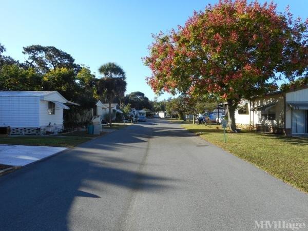 East Lake Landings Mobile Home Park in Hudson, FL