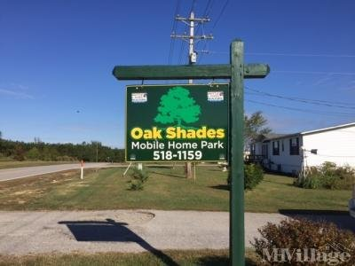Oak Shades