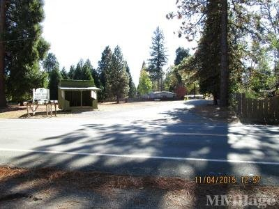 Mobile Home Park in Foresthill CA