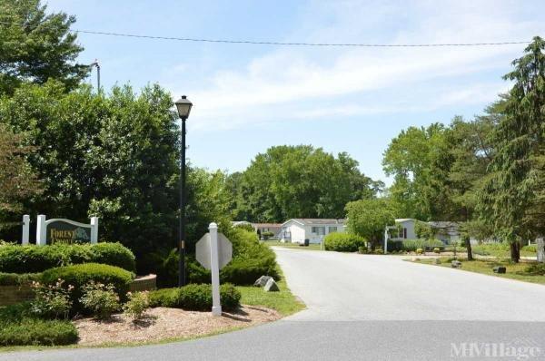 Photo of Forest Grove Mobile Home Park, Hartly DE