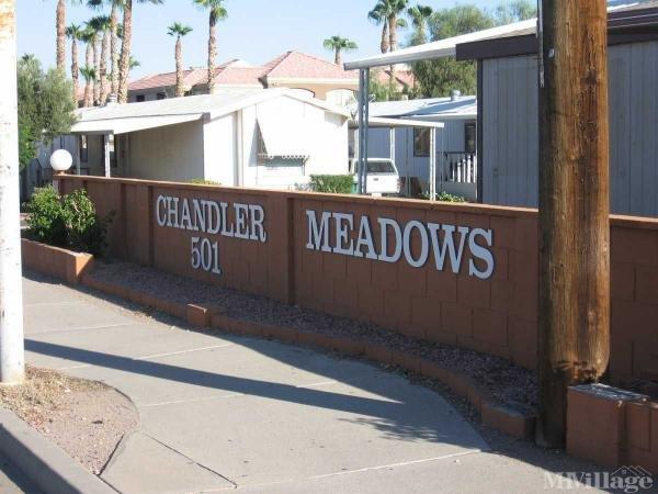 Photo of Chandler Meadows, Chandler, AZ
