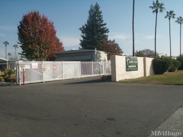Photo of Golden Palms MHE, Sacramento, CA
