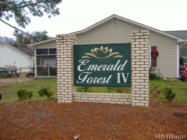 Photo of Emerald Forest, Myrtle Beach, SC