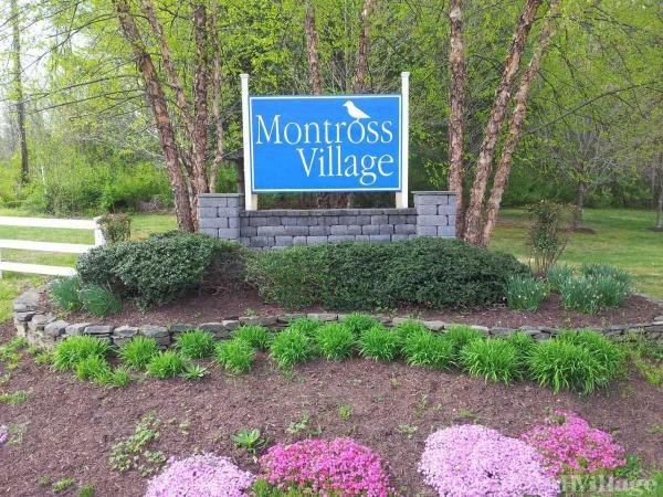 Photo of Montross Village, Montross, VA