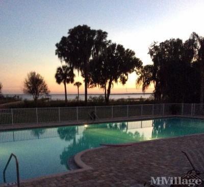 Beautiful Pool Views