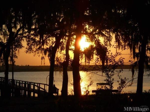 Photo of Salt Springs Village, Salt Springs, FL