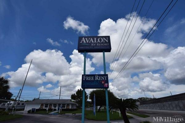Photo of Avalon, Clearwater, FL