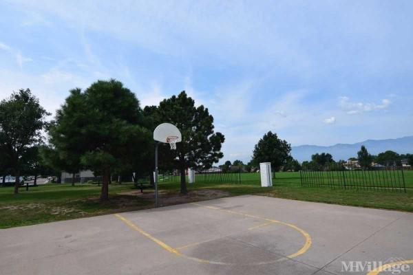 Canterbury Basketball Court