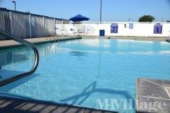 Chisholm Creek Swimming Pool
