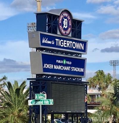Tigertown Spring Training