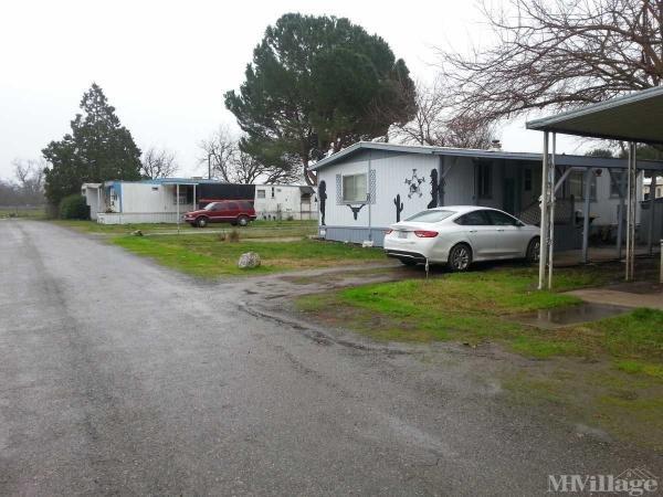 Photo of Antelope Creek Mobile Home Park, Los Molinos, CA