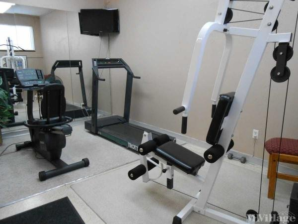 Gym with shower for your workouts