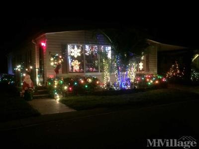 Winner 2017 Christmas Lights