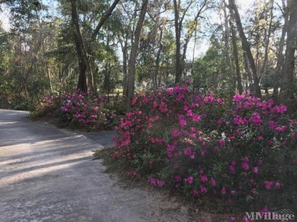 Photo of Hideaway Mobile Home Park, Orange Park, FL