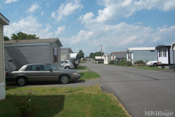 Photo of Pullen Ct Mobile Home Park, Culpeper, VA