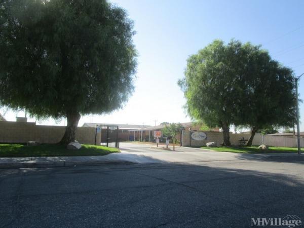 Photo of Oasis Palms, San Bernardino, CA