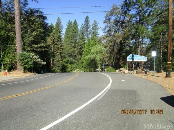 Photo of Tall Pines, Grass Valley, CA
