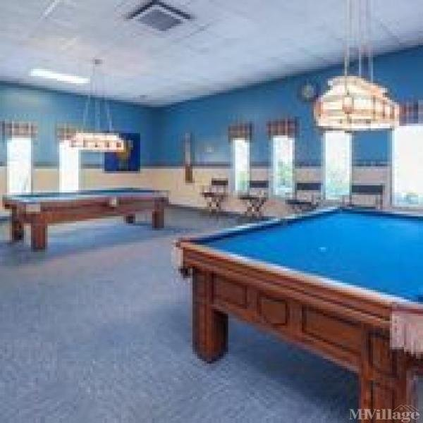 Billiard room with pool tables