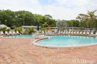 Horseshoe Cove RV Resort