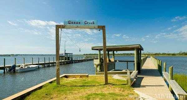 Photo of Goose Creek, Newport, NC