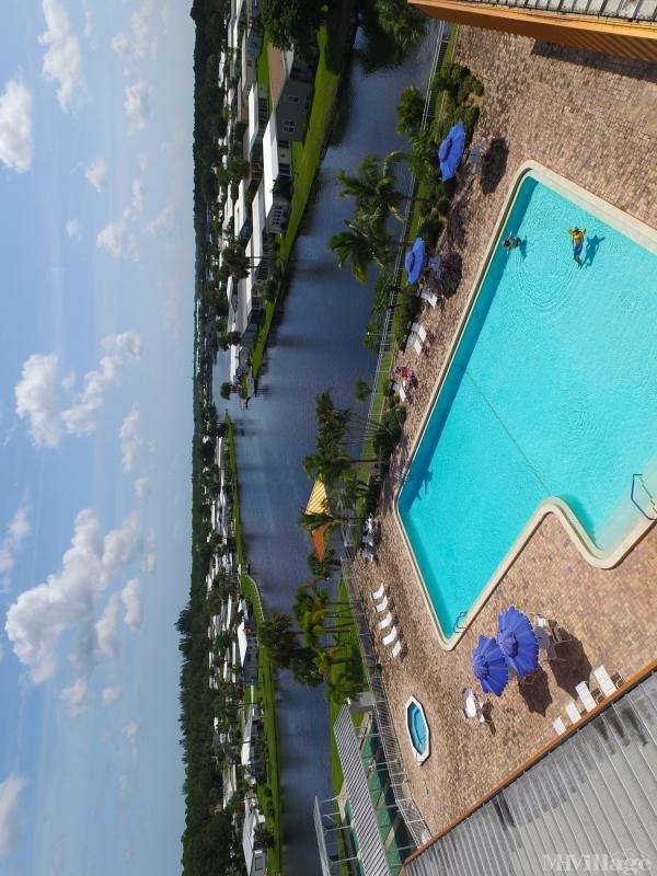 Large Lap Pool