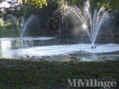 Photo 2 of 8 of park located at 10109 Oak Forest Drive Riverview, FL 33569