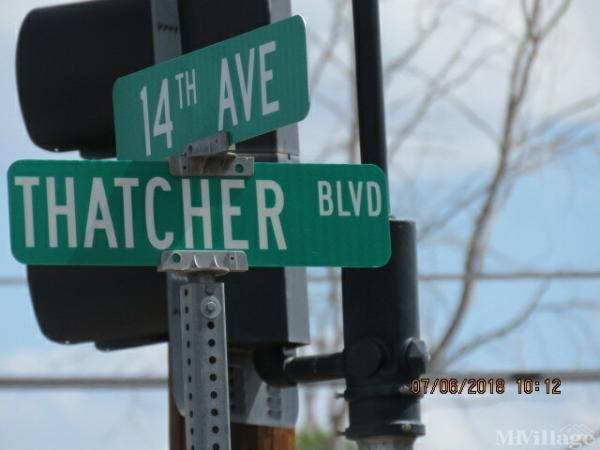 Photo of Lexington Pines, Safford, AZ