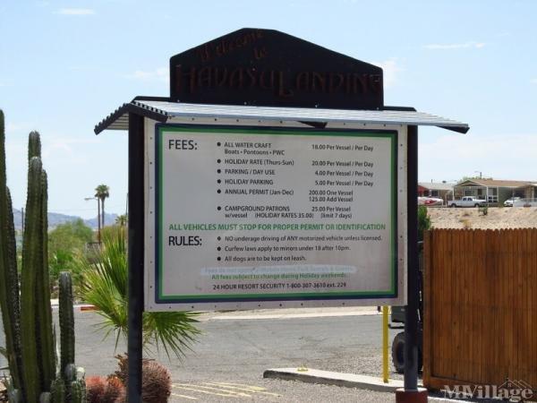 Photo of Havasu Landing Resort, Havasu Lake, CA