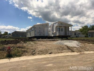 New homes arriving all the time!