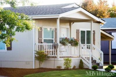 Mobile Home Park in Junction City OR