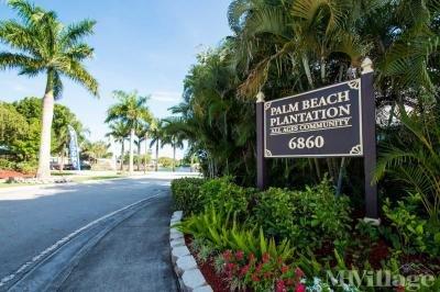 Welcome to Palm Beach Plantation