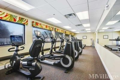 Fitness Room overlooking Pool