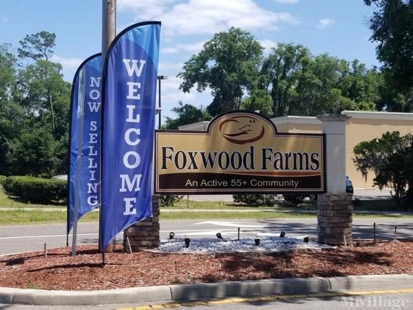 Photo of Foxwood Farms, Ocala, FL
