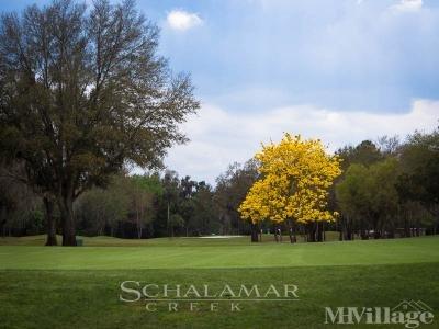 Schalamar Creek